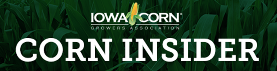 June 21, 2019 Corn Insider page banner