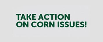 Take Action on Corn Issues